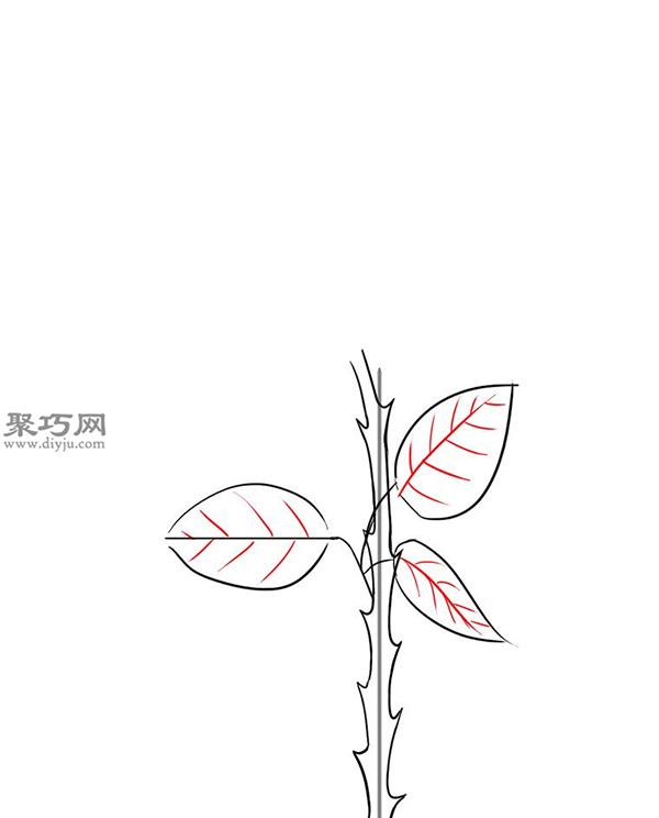 用铅笔画玫瑰花的简笔画步骤