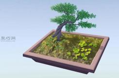 如何制作小型盆景 自制微型盆栽方法