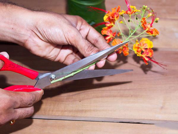 如何在小花瓶里插花 小瓶插花技巧 5