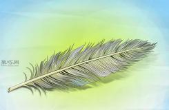 逼真的羽毛的画法步骤 教你怎么画羽毛更真实