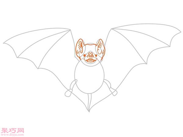 蝙蝠怎么画更逼真 16