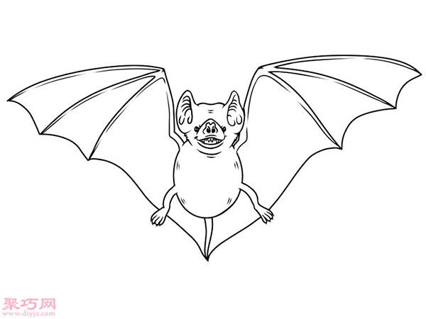 蝙蝠怎么画更逼真 17