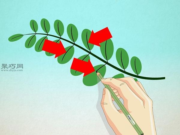 画树叶的步骤 教你现实中的树叶怎么画