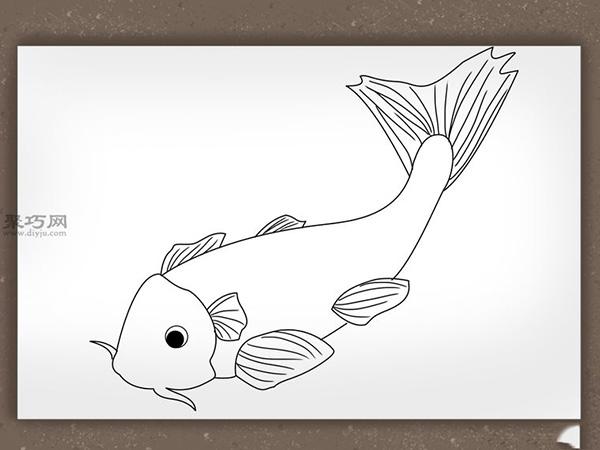 錦鯉簡筆畫怎么畫 如何畫一條逼真的錦鯉 5