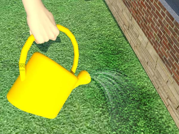 草坪如何灌溉才能既节水又有效 8