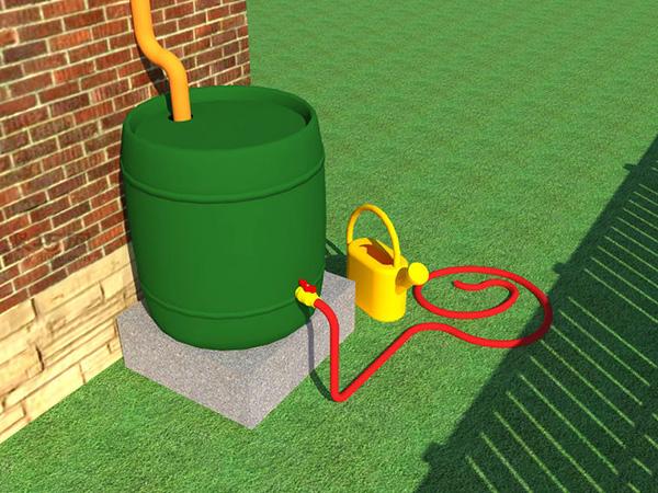 草坪如何灌溉才能既节水又有效 7