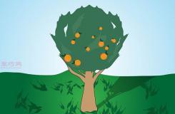 如何种植一棵树成活率高 种活一棵树步骤