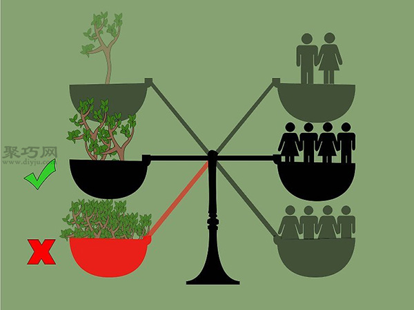 苗圃业创业都要做哪些准备工作 2