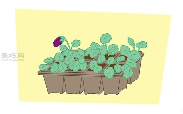 蝴蝶花的养殖方法 教你蝴蝶花怎么种植