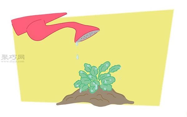 蝴蝶花的养殖方法 教你蝴蝶花怎么种植 4