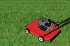 草坪种植与养护管理方法 草坪籽怎么种出漂亮的草坪
