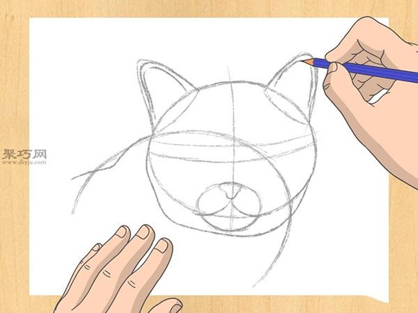 怎样画出一幅好画 铅笔素描猫的画法步骤 10