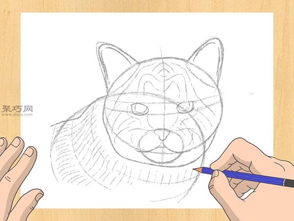 怎样画出一幅好画 铅笔素描猫的画法步骤 11