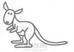 袋鼠簡筆畫的畫法步驟4