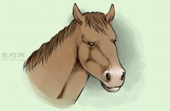 写实风格马头部画法步骤 来看怎样画马