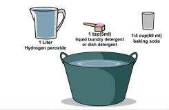 怎么樣用雙氧水和小蘇打去除臭鼬味道