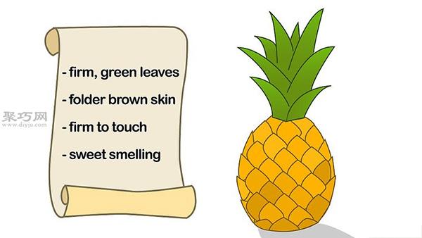 如何种菠萝 1