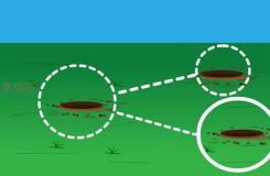 如何�y量土壤pH值 用通用�y�探�^�y量土壤pH�D解教程