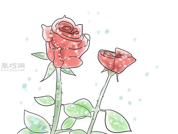 �N植玫瑰花教程�D解 13