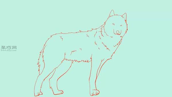 站立的狼��法教程