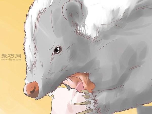 清除臭鼬圖片教程 1