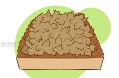 怎么樣種植一年花冠蘆筍 種蘆筍教程圖解