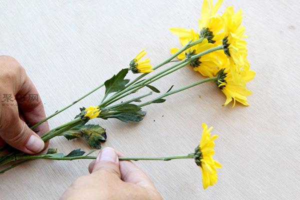 如何養護瓶花或鮮花 6