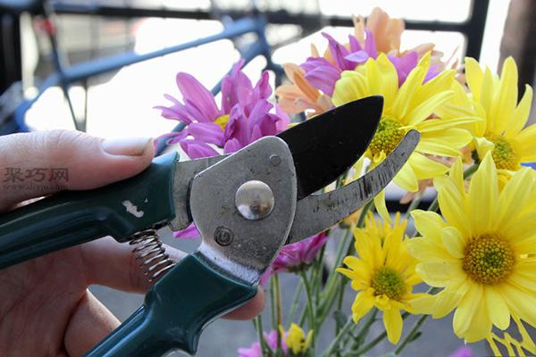如何養護瓶花或鮮花 7