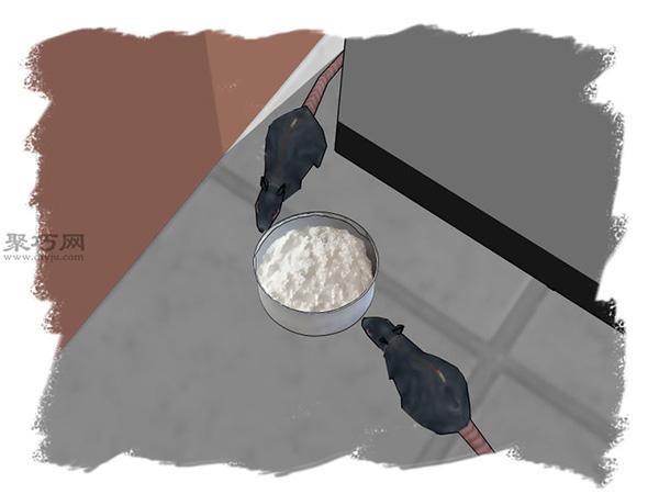 面粉、糖和小蘇打做老鼠藥教程圖解 9