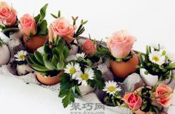 鸡蛋壳的妙用 手工制作鸡蛋壳绿植小盆栽