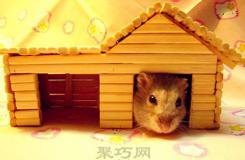 一次性筷子自制仓鼠窝 diy小房子图解