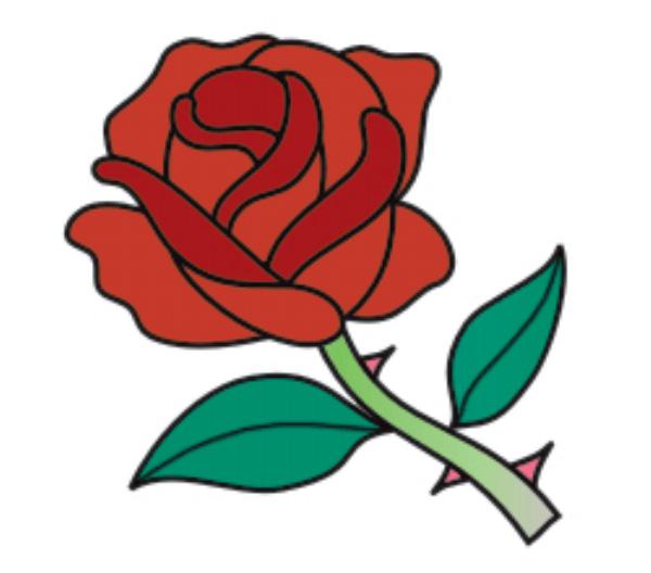 玫瑰花簡筆畫第5步