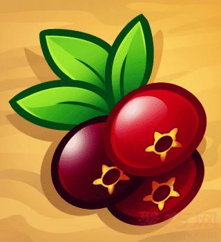 小紅莓簡筆畫第8步