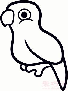 简易画鹦鹉的步骤 画鹦鹉的简笔画图片