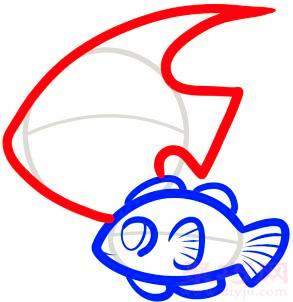 热带鱼简笔画第5步