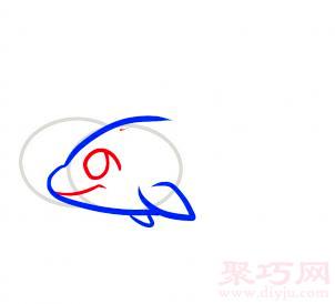 海豚簡筆畫第3步