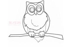 儿童简笔画猫头鹰的画法 教你怎么画猫头鹰简笔画