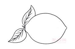 兒童簡筆畫檸檬的畫法 教你怎么畫檸檬簡筆畫