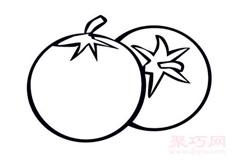 簡筆畫西紅柿的畫法 教你如何畫番茄簡筆畫
