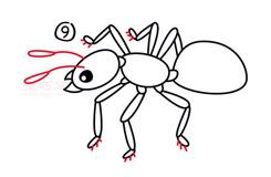 兒童簡筆畫蟻后的畫法 教你如何畫蟻后簡筆畫