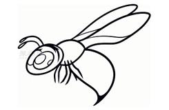 兒童簡筆畫黃蜂的畫法 教你如何畫黃蜂簡筆畫