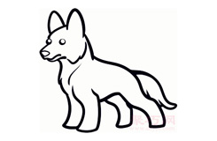 幼兒簡筆畫牧羊犬的畫法 教你如何畫牧羊犬簡筆畫