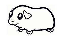 幼兒簡筆畫豚鼠的畫法 教你怎樣畫豚鼠簡筆畫
