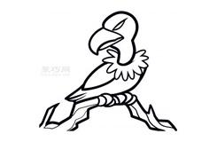 幼兒簡筆畫禿鷹的畫法 教你怎樣畫禿鷹簡筆畫