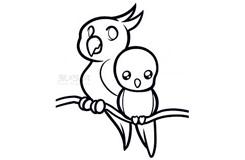 简易画两只鹦鹉的步骤 画两只鹦鹉的简笔画图片