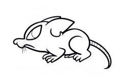 儿童简笔画鼠的画法 教你怎样画鼠简笔画