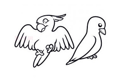 简易画鸟类的步骤 画鸟类的简笔画图片