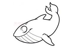 兒童簡筆畫鯨魚的畫法 教你如何畫鯨魚簡筆畫