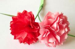 康乃馨的折法圖解教程 教你如何手工折紙康乃馨