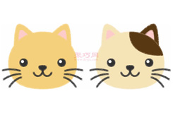 小貓頭像的畫法步驟 教你怎么畫小貓頭像簡筆畫